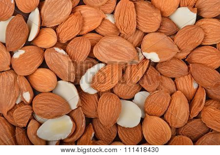 Dried Apricot Kernel