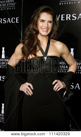 Brooke Shields attends the Rodeo Drive Walk Of Style Award honoring Gianni and Donatella Versace held at the Beverly Hills City Hall in Beverly Hills, California on February 8, 2007.