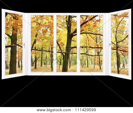 Window Overlooking The Autumn Park With Yellow Trees