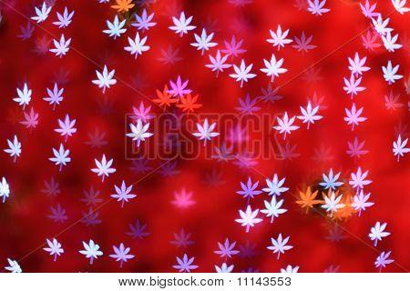 Defocused Maple Leaves Background (bokeh)