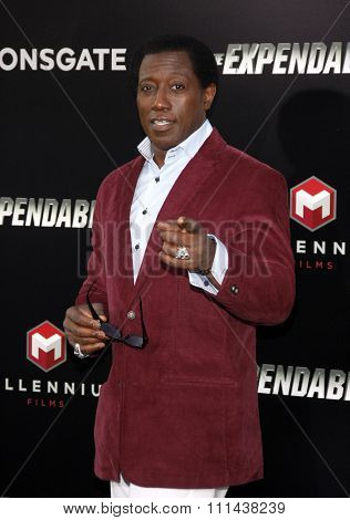 Wesley Snipes at the Los Angeles premiere of