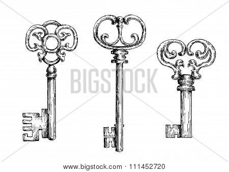 Sketch of isolated medieval keys or skeletons