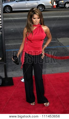 Traci Bingham at the Los Angeles premiere of