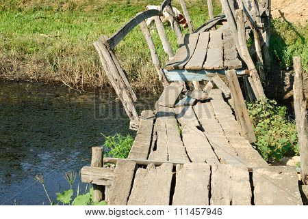 Old Ruined Bridge On A Background Of Green Grass And Cows