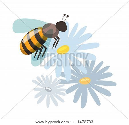 Bee cartoon style vector illustrations