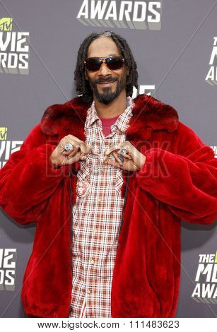 Snoop Dogg at the 2013 MTV Movie Awards held at the Sony Pictures Studios in Los Angeles, United States, 140413.