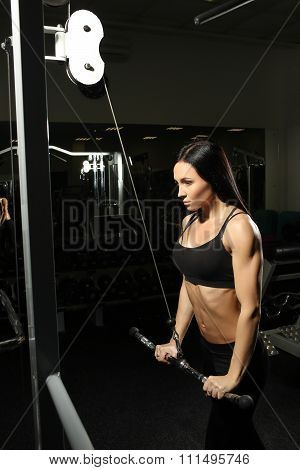 Brunette fitness girl perfect body in gym. doing triceps exercises