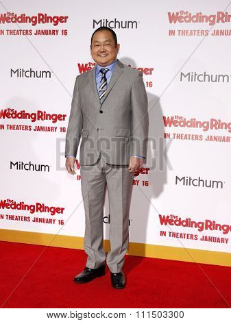 Aaron Takahashi at the Los Angeles premiere of 'The Wedding Ringer' held at the TCL Chinese Theater in Hollywood on January 6, 2015.