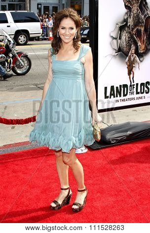 Amy Brenneman at the Los Angeles premiere of 'Land Of The Lost' held at the Grauman's Chinese Theatre in Hollywood on May 30, 2009.