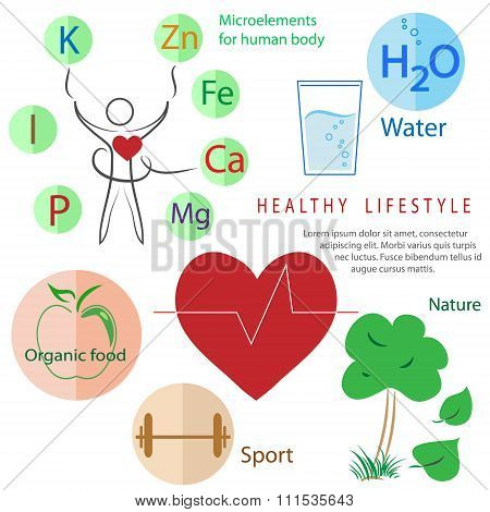 healthy lifestyle infographic: activity, nutrition, rest