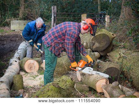 People Sawing Wood