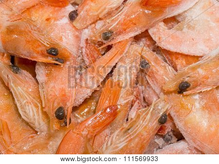 Frozen Fine Fresh Shrimps In Ice At Fish Market