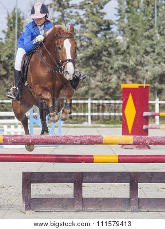 Rider Girl Jumping With Horse