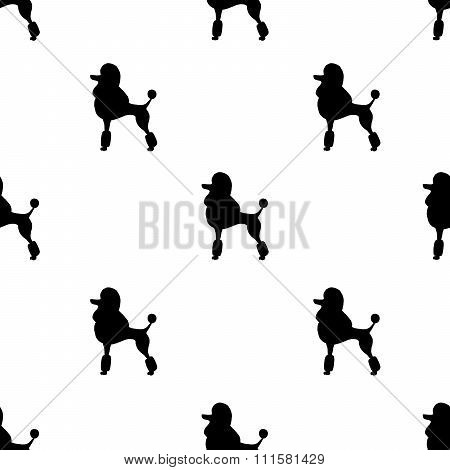 Seamless walapaper black poodles on white background.