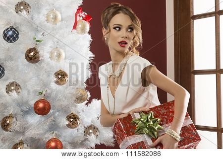 Elegant Woman With Xmas Present
