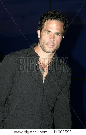 Shawn Christian at The WB Network's 2004 All Star Party- Red Carpet & Party at The Lounge At Astra West in Los Angeles, USA on July 14, 2004.