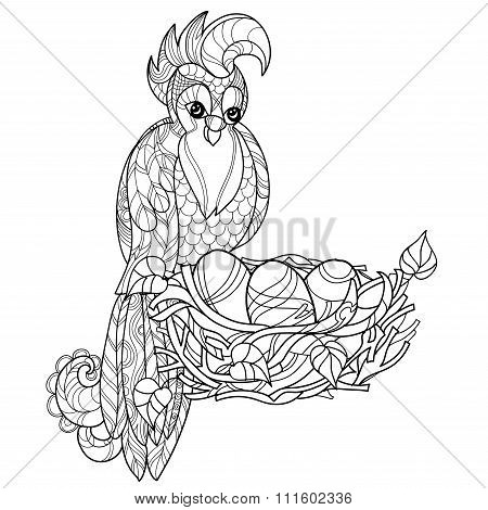 Zentangle  parrot on nest. Hand Drawn vector