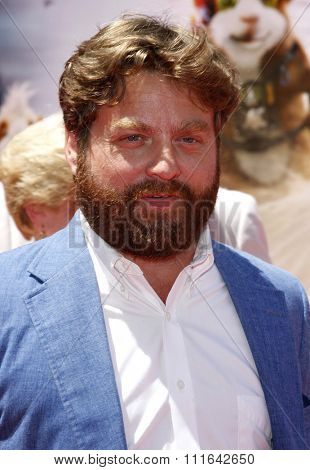 HOLLYWOOD, CALIFORNIA - July 19, 2009. Zach Galifianakis at the Disney World Premiere of