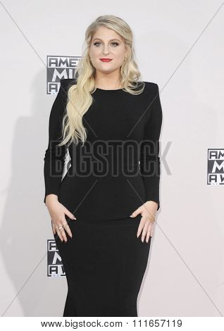 Meghan Trainor at the 2015 American Music Awards held at the Microsoft Theater in Los Angeles, USA on November 22, 2015.