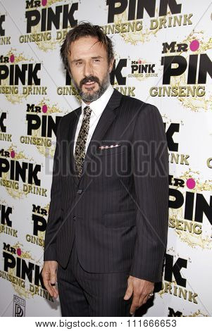 David Arquette at the Mr. Pink Ginseng Drink Launch Party held at the Regent Beverly Wilshire Hotel, Los Angeles, USA on October 11, 2012.