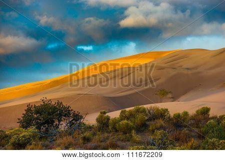 Desert Sunrise Colorado Usa