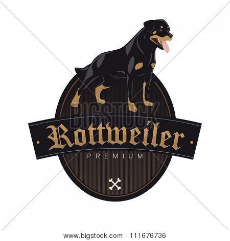 rottweiler dog in a badge vector illustration