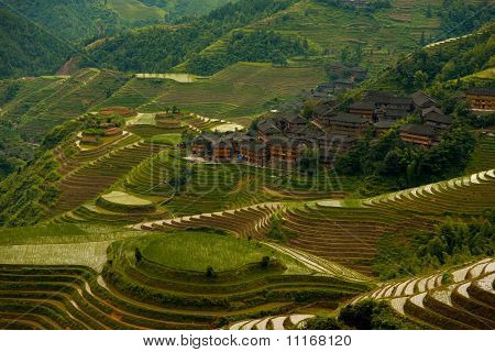 Cascading Flooded Rice Terraces Village Titian Longji