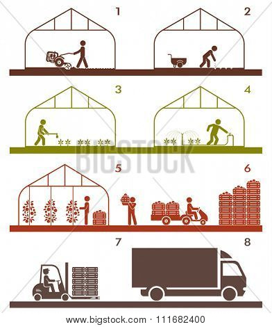 Pictogram icon set presenting different stages in agricultural process and gardening. Plowing, sowing, watering, picking and warehousing, transporting.
