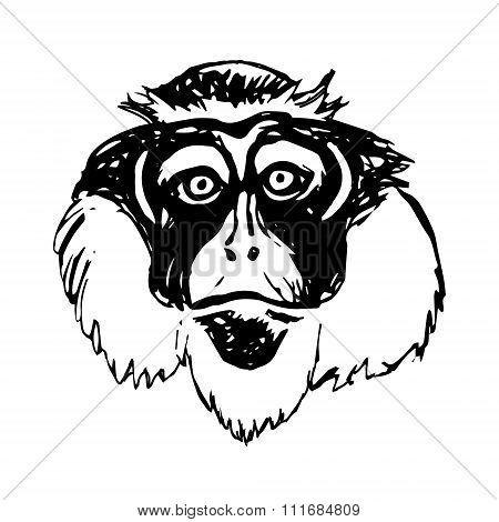 Monkey Head (abstraction) - Sad