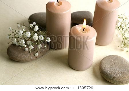 Beautiful composition of alight candles with pebbles and flowers on white background, close up