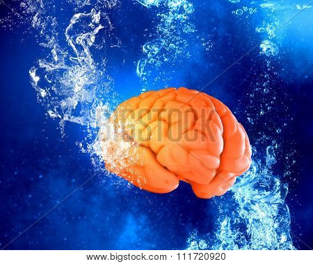 Human brain floating in clear blue water
