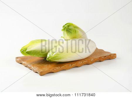 heads of fresh belgian endive on wooden cutting board