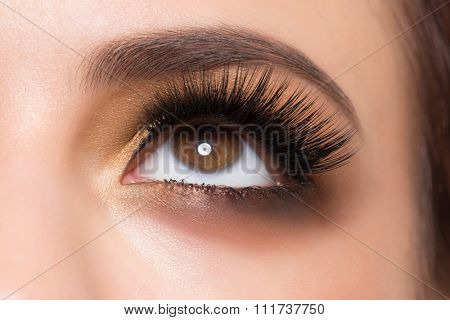 Closeup image of beautiful woman eye with fashion golden makeup and long eyelashes