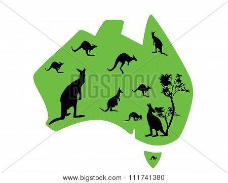Green Map Of Australia With Lots Of Kangaroos