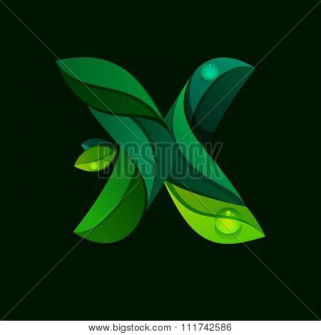 X Letter Logo Formed By Green Leaves.
