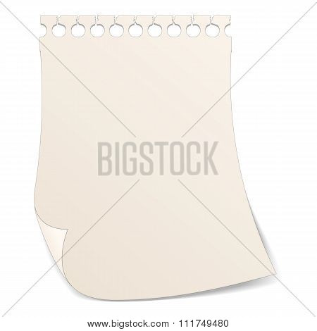 Paper with ripped holes icon