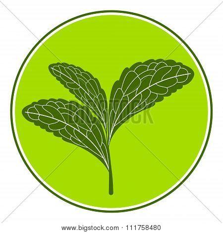 Stevia logo illustration.