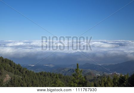 Inland Central Gran Canaria, Las Cumbres, The Highest Areas Of The Islands