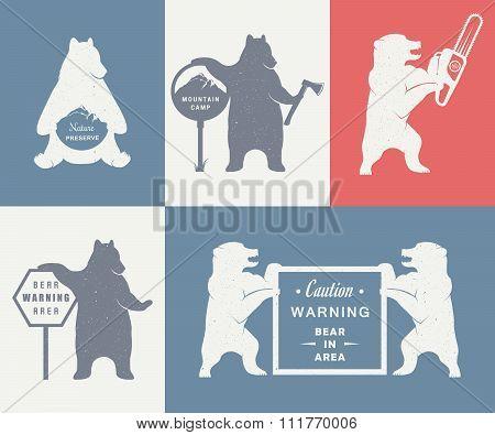 Vintage Illustration Of Bear