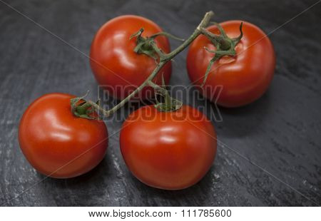 Fresh branch of red Sicilian ripe tomatoes on a stone background.