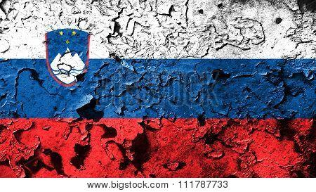 Slovenia flag, Slovenian Flag painted on cracked paint