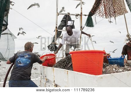 BEAUFORT, SOUTH CAROLINA-OCTOBER 16, 2015: Unidentified workers haul nets and sort fish on a fishing vessel off the coast of Beaufort, South Carolina