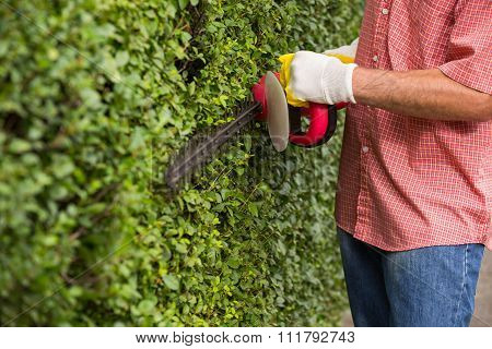 Gardener cutting a hedge with a hedge cutter, close up
