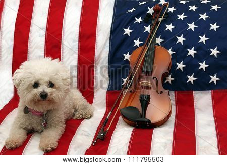 A 3/4 size Violin lays against an American flag with a Pure Breed Bichon Frise Dog