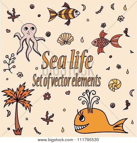 Set Of Sea Animals And Elements. Cute Aquatic Creatures. Hand Drawn Illustration With Shells, Whale.