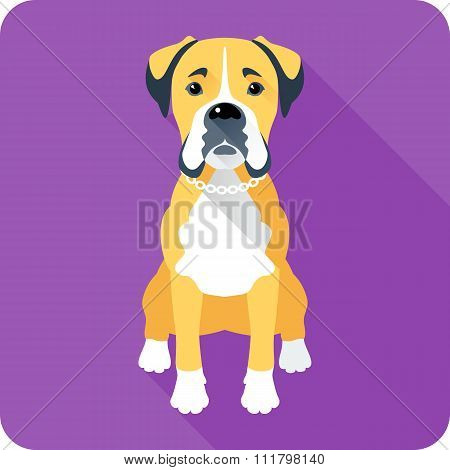 dog Boxer icon flat design