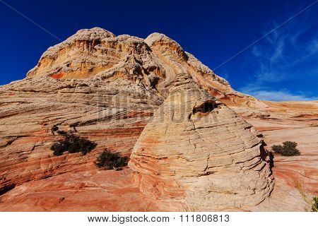 Vermilion Cliffs National Monument Landscapes