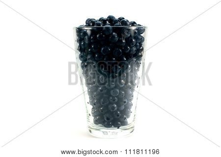Fresh Ripe Organic Bilberries