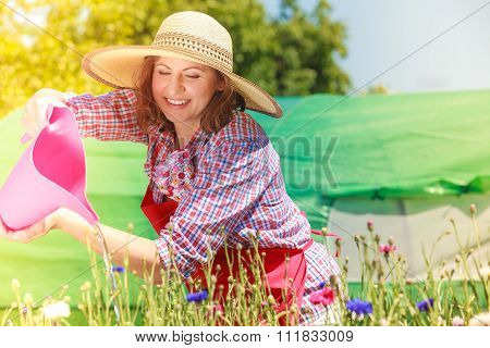 Woman Watering Flowers In Garden
