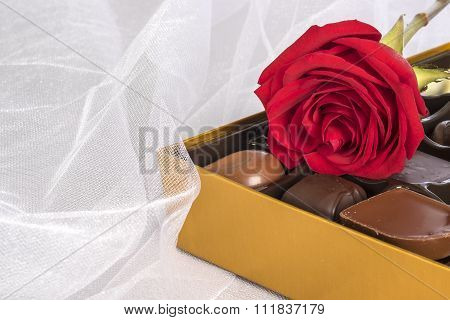 Single Red Rose and a Box of Gourmet Chocolates on White Tulle Fabric Background